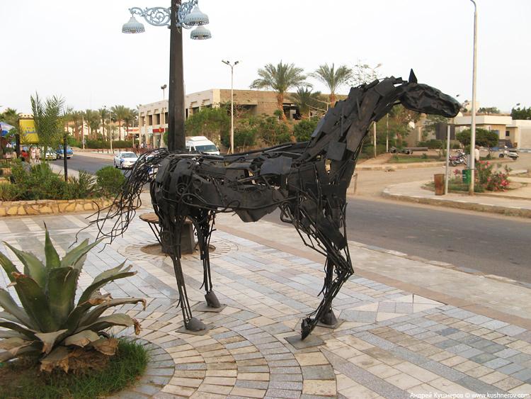 Лошадка в центре Шарм-эль-Шейха