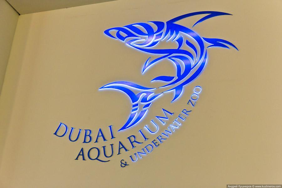 Дубай - Аквариум в Дубай Молл (5)